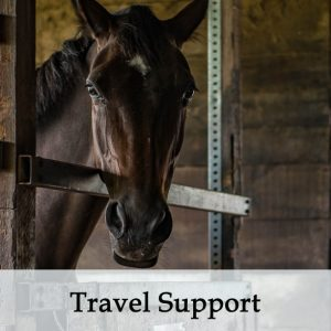Herbal Treatments for Equine Travel Support