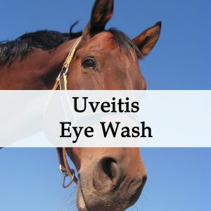 Herbal Treatment for Uveitis Eye Inflammation - Eye Wash For Horses