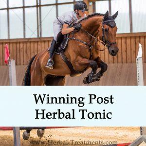 Winning Post Herbal Tonic for Horses