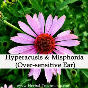 Herbal Medicine for Hyperacusis & Misphonia (Over-sensitive Ear)