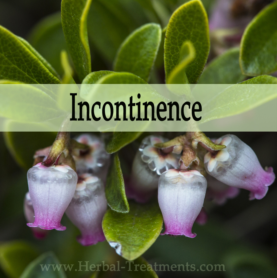 Herbal Medicine for Incontinence