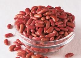 Why Kidney Bean  is in the Herbal Treatment for Recovery from Adrenal Exhaustion & Rehabilitation from Adrenal Abuse