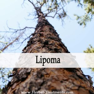 Herbal Medicine for Lipoma Recovery & Prevention