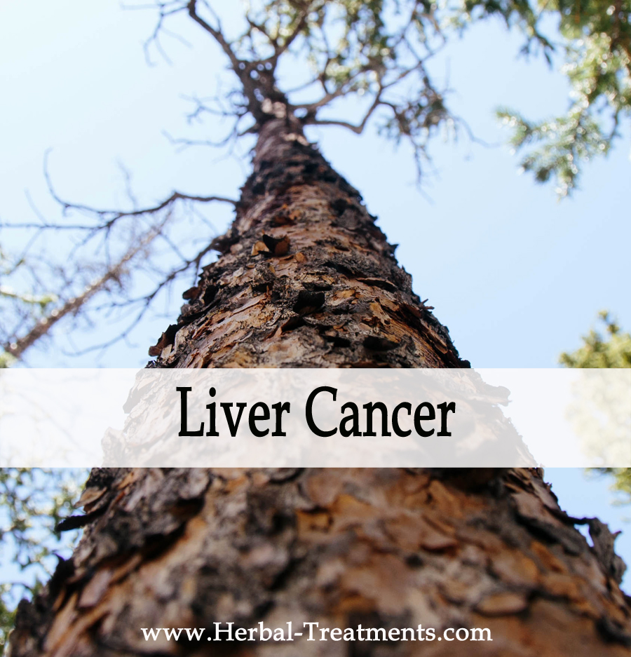 Cancer herbal liver treatment - Herbal Medicine For Liver Cancer Recovery Prevention