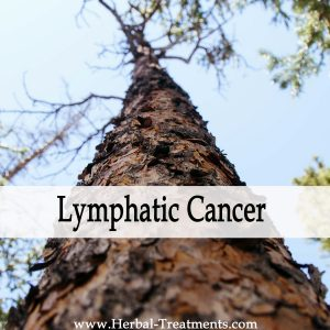 Herbal Medicine for Lymphatic Cancer Recovery & Prevention