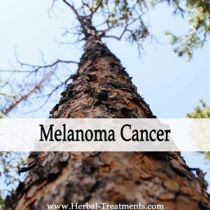 Herbal Medicine for Melanoma Cancer Recovery & Prevention