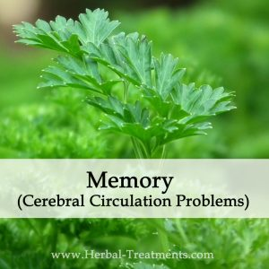 Herbal Medicine for Memory (Cerebral Circulation Problems)