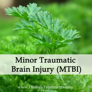Herbal Medicine for Minor Traumatic Brain Injury (MTBI)