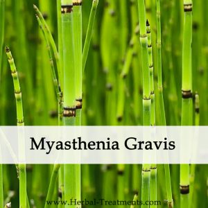 Herbal Medicine for Myasthenia Gravis