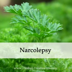 Herbal Medicine for Narcolepsy