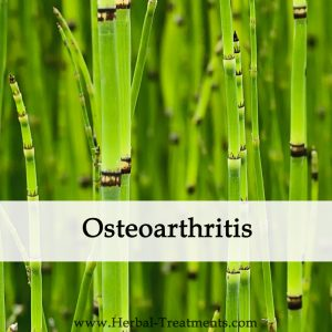 Herbal Medicine for Osteoarthritis