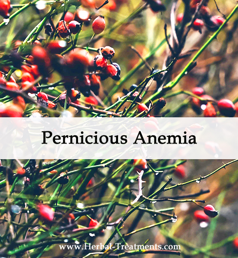 Herbal Medicine for Pernicious Anemia
