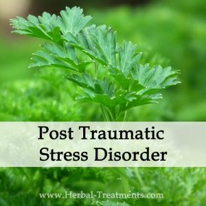 Herbal Medicine for Post Traumatic Stress Disorder - PTSD