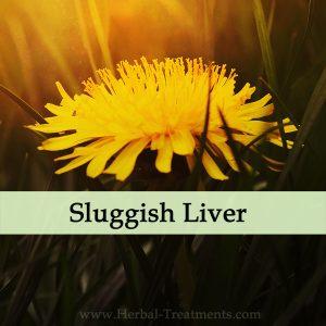 Herbal Medicine for Sluggish Liver Function