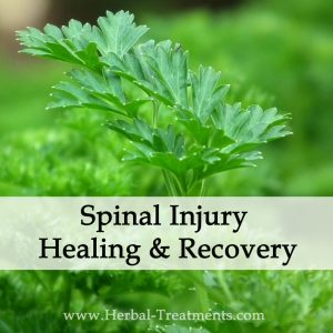 Herbal Medicine for Spinal Injury Healing & Recovery