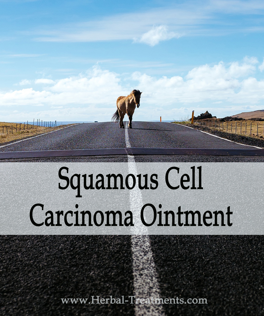 Herbal Treatment - Squamous Cell Carcinoma Ointment for Horses