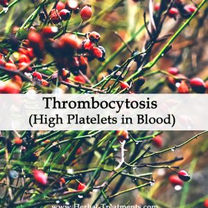 Herbal Medicine for Thrombocytosis or High Platelets in Blood