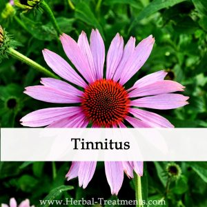 Herbal Medicine for Tinnitus (Ringing, Buzzing in the Ear )